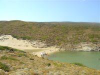 Ateni Andros beach