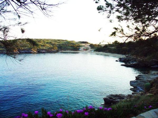 kolona beach batsi andros